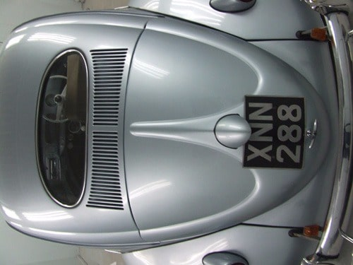 close up silver oval Beetle