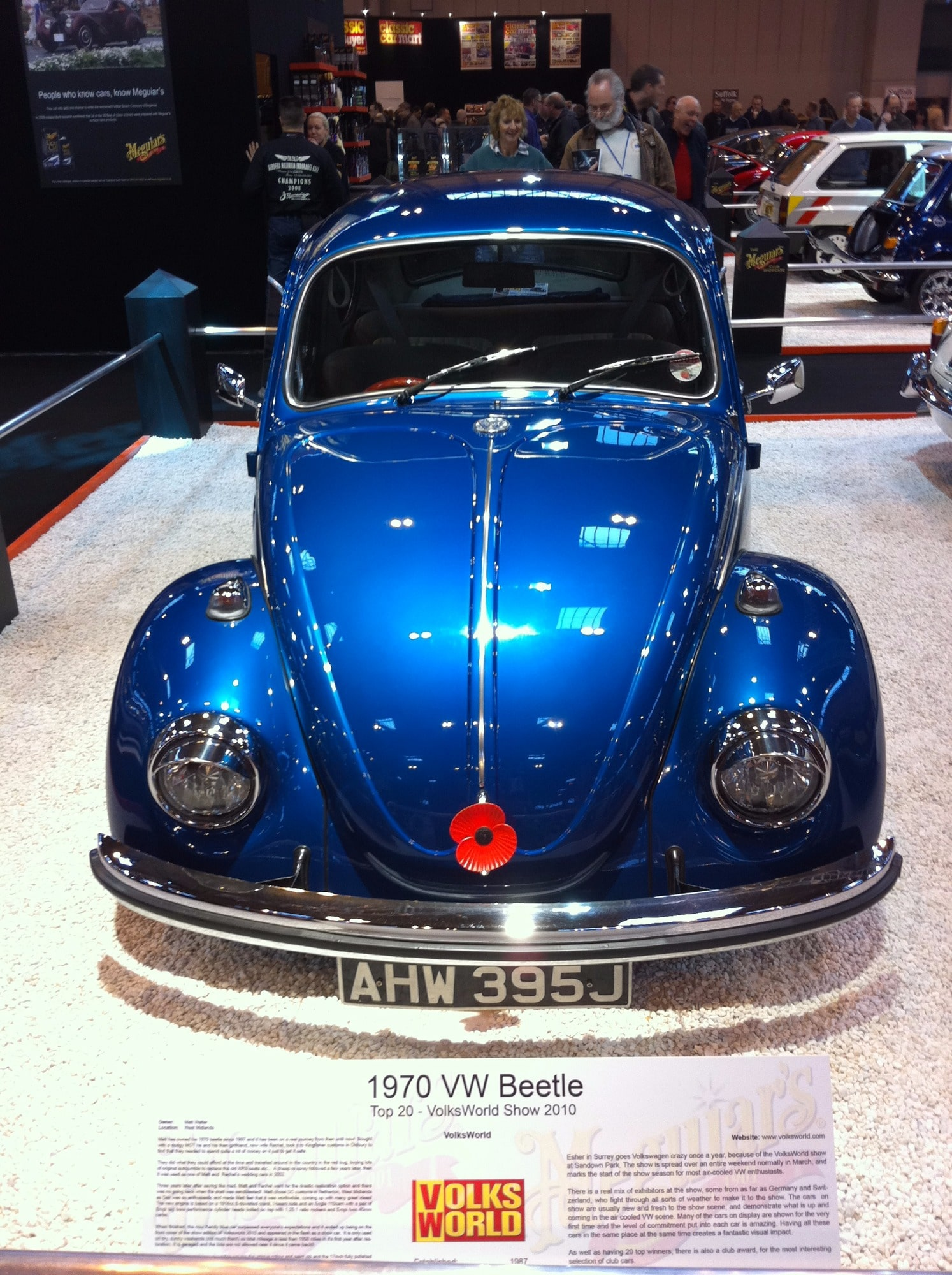 candy blue Beetle in show