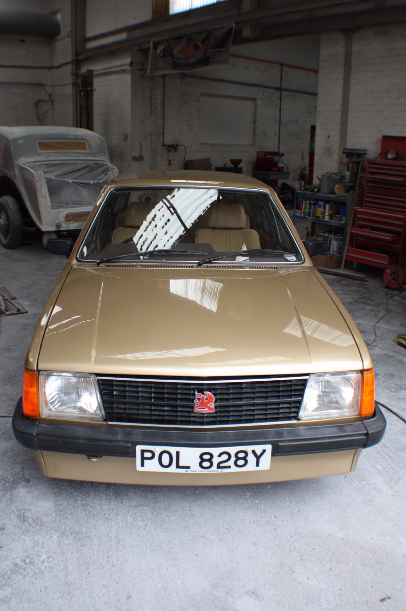 mk1 astra top view gold